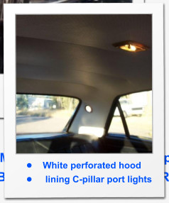 •	White perforated hood •	 lining C-pillar port lights